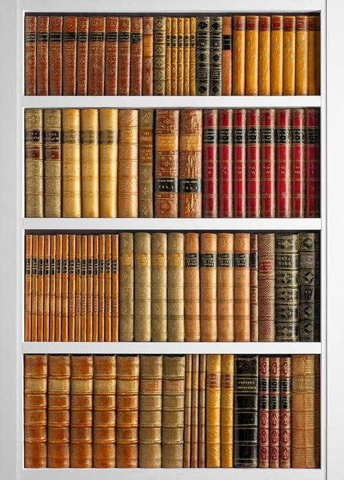 DecBOOKS Imitation Books Dummy Books Faux Books False Books Fake Books Replica Books