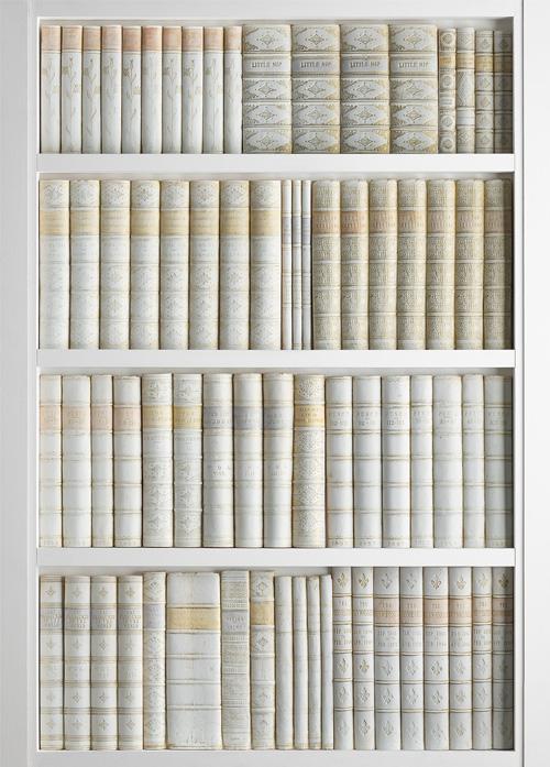 DecBOOKS Faux Books False Books Fake Books Imitation Books Replica Books